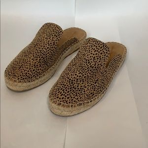 Universal Thread leopard slides